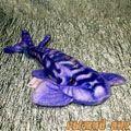 Скат Леопардовый 30 см