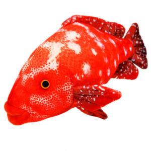 Рыба Групер 30 см