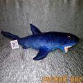 Синяя Акула (малая)