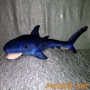 Акула Синяя (большая)