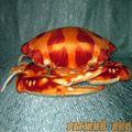 Краб большой оранжевый 50 см