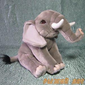 Слон натуральный