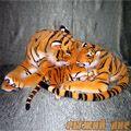 Большой Тигр с тигренком
