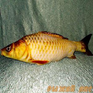 Мягкая игрушка Рыба 100 см