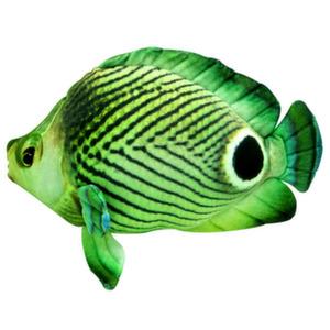 Рыба бабочка зел. 30 см