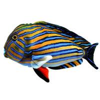 Рыба Хирург Полосатый 30 см