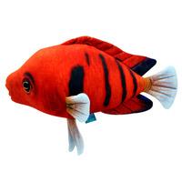Рыба Огненный Ангел 30 см