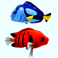 Мягкие игрушки Рыбы