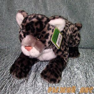 Детеныш Леопарда серый
